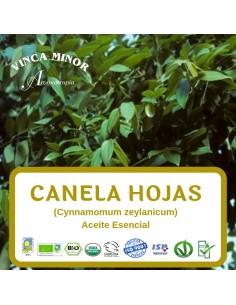 Canela (Cynnamomum zeylanicum Ness C.) - Aceite Esencial 10 ml