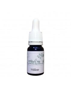 Willow (Salix vitellina)10 ml - El Jardi de Les Essencies