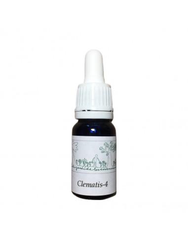 Clematis-4 (Clematis vitalba) 10 ml - Esencia Investigacion - El Jardi de Les Essencies