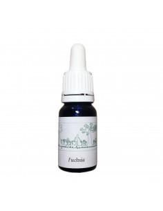 Fuchsia (Fuchsia hybrida) 10 ml - El Jardi de Les Essencies
