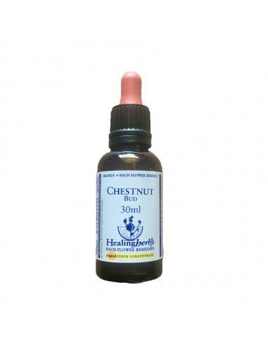 Chesnut Bud 30 ml Healing Herbs