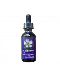 Blackberry (Rubus ursinus) - 30 ml FES