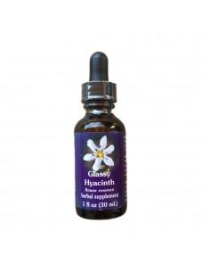 Glassy Hyacinth (Jacinto Cristalino) Triteleia lilacina - 30 ml FES